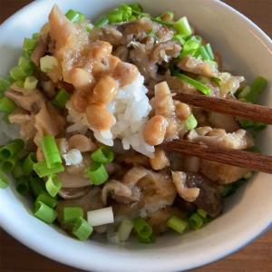 きのこおろしの納豆ごはんと、卵を落としたお味噌汁。