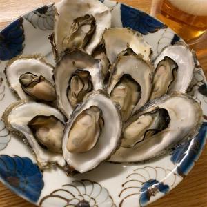 北海道サロマ湖産の殻つき牡蠣【北海道を楽しむグルメ】