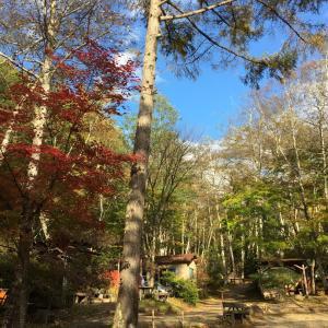 【笛吹小屋キャンプ場】山梨の紅葉が美しい自然派キャンプ場