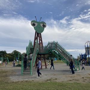 【荒川彩湖公園】大きなカマキリ遊具がインパクト大!台風の影響から復活した公園
