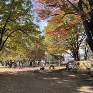 【与野公園】大規模なバラ園が特徴的なアクセスの良い大型公園