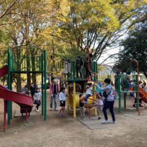 【光が丘公園】複合遊具がたくさん!広い芝生でのんびりした休日を楽しめる大型公園