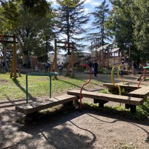 【伊佐沼公園】無料の公園でフィールドアスレチックにチャレンジしよう!