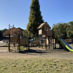 【木場公園】植物園・美術館・複合遊具等々!子供と楽しめる施設が充実した都心の大型公園