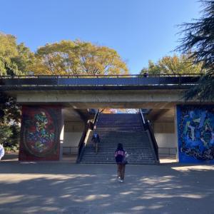 【代々木公園】花見やイベントが有名な巨大公園!幼児用レンタサイクルもあります