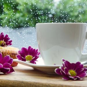 雨の日の 楽しみ♪