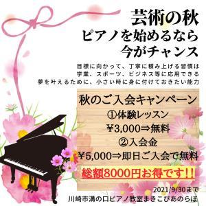 レッスン19回目の小3さんは、きれいな音で弾いている、川崎市溝の口のピアノ教室