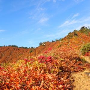 平ヶ岳▲①溢れかえるくらいの紅葉だったー