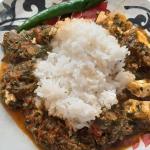 【レシピ】ホウレンソウの栄養丸ごと!簡単豆腐で作るサグパニールカレー(30分)