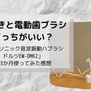 手磨きと電動歯ブラシどっちがいい? – 「パナソニック音波振動ハブラシ ドルツEW-DM62」を3か月使ってみた感想