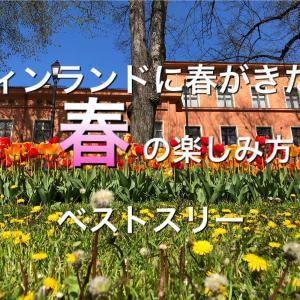 フィンランドに春がきた!北欧「春・夏」の楽しみ方ベストスリー♪【オペア体験日記16】