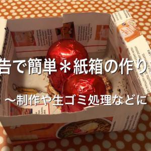 広告で簡単*紙箱の作り方〜子どもとの制作や生ゴミの処理などに