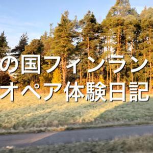 【海外長期滞在/旅行】1年間分の持ち物について【オペア(AuPair)日本での準備編第2弾】