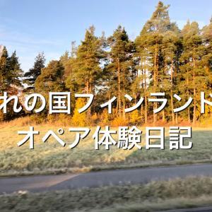 【フィンランド旅行】【オペア】フィンランドの治安・お金・言語・ネット事情丸わかり【AuPair日本での準備編第三弾】