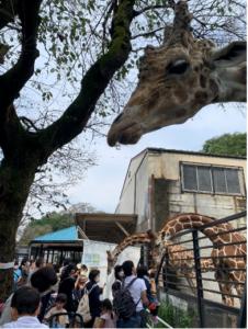 【娘5歳6ヶ月目&息子4歳1ヶ月目】宇都宮動物園