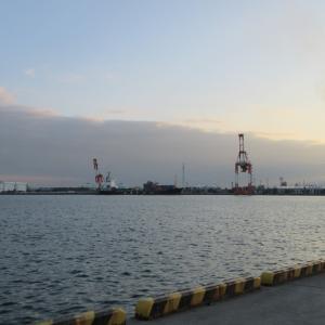 四日市港と霞埠頭でサビキ釣り