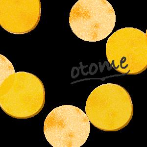 新発売★成城石井のフランス風ミニドーナツ<プレーン>