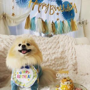 ミルトの誕生日〜
