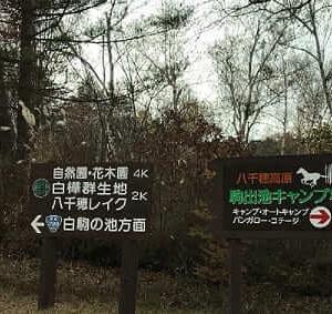 駒出池キャンプ場で人生初キャンプ【2020年11月】