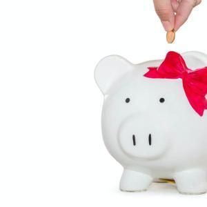 【ひとり暮らしフリーランス】わたしのお金の管理のやり方。どんぶり勘定でも貯金しっかり、ポイントも貯める工夫!