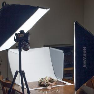 【レビュー】NEEWERソフトボックス写真照明用キットを使ってみた感想!