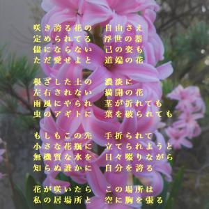 『花としての自由律』 ~楽式~