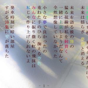 水溜まりの詩 楽式~tanosiki~