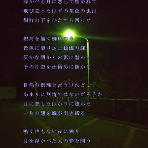 休まない灯 (楽式~tanosiki~)