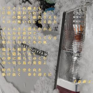 鳥倣え ~楽式 tanosiki~