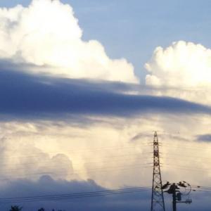 雲の端に腰を掛け 1 (小説)