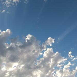 雲の端に腰を掛け 6 (小説)