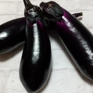 ようやく茄子やミニトマトが採れた。