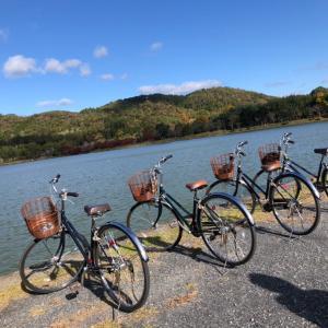 自転車持たずに旅に出た  京都編③