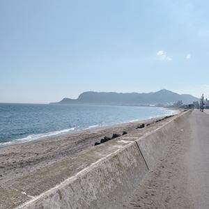 オタクにスメラー不器用が 真夏のビーチを散歩した