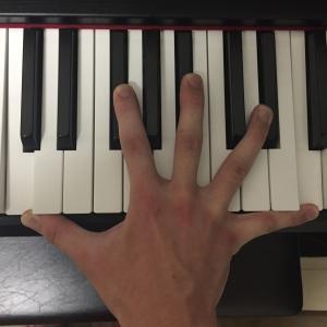 【約50%の人が9度!?】ピアノを弾く人の手の大きさについてアンケートとってみた