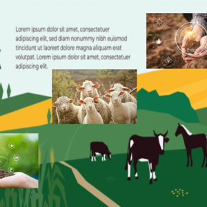 【農業】農業・水関連にも投資をする  (コモディティ)