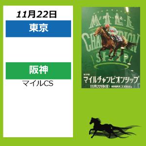 11月22日配置表(東京/阪神)