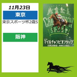 11月23日配置表(東京/阪神)