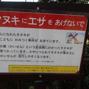 釣り馬鹿Gちゃん釣行記 公園タヌキ