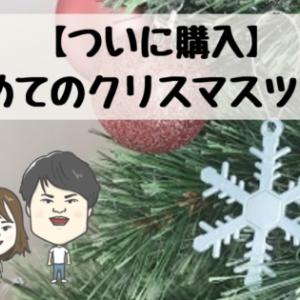 【ついに購入】初めてのクリスマスツリー