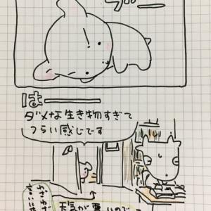 ヤンやる通信7月5日号