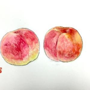 「桃の絵」を描く、難しい!