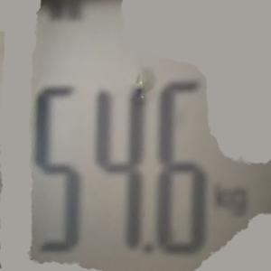 体脂肪計12月