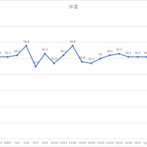 12月までグラフ