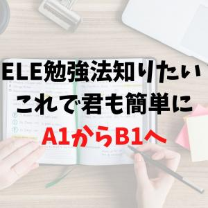 DELE A1レベルから半年でB1取得する方法