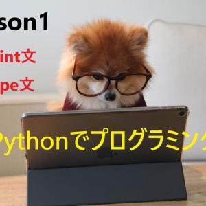 【Pythonのコードを書いてみよう   詳しいコード付き】print文とtype関数