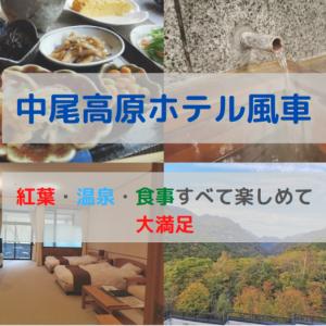 【宿泊記】中尾高原ホテル風車の夕食・評判は?実際に宿泊した感想も紹介!