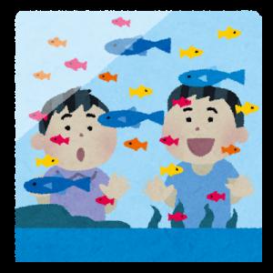 おたる水族館は小さな子供連れにおすすめ。イルカショーや体験コーナーが充実!