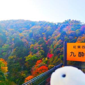 【九酔渓 桂茶屋】紅葉百選!人気紅葉スポットで見て食べてリラックス