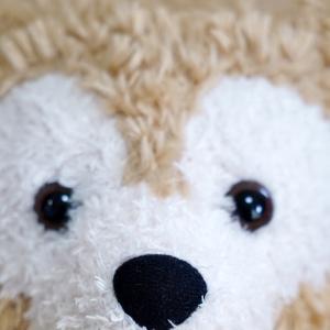 めんちゃん(Duffy)